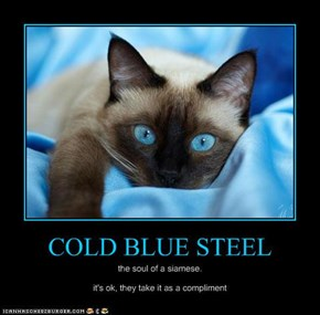 COLD BLUE STEEL