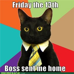 Business Cat: You Lucked Out