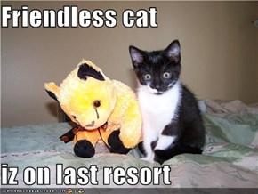 Friendless cat  iz on last resort