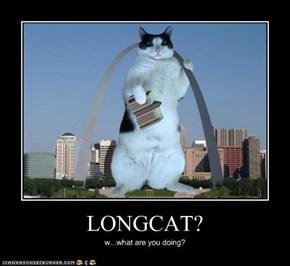 LONGCAT?