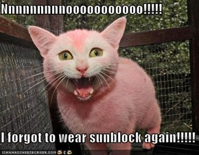 Nnnnnnnnnooooooooooo!!!!!  I forgot to wear sunblock again!!!!!