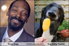 Snoop Dogg Totally Looks Like Dog Eating Popsicle