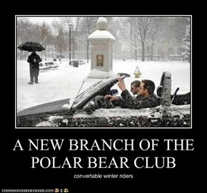 A NEW BRANCH OF THE POLAR BEAR CLUB