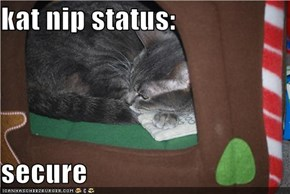 kat nip status:  secure