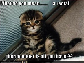 What do you mean........     a rectal        thermometer is all you have ??