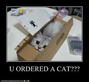 U ORDERED A CAT???