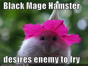 Black Mage Hamster  desires enemy to fry