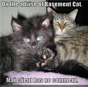On the advise of Basement Cat,  Mai client has no comment.