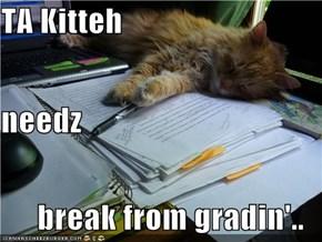 TA Kitteh needz break from gradin'..