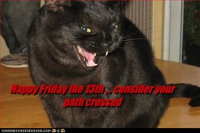 Happy Friday the 13th ... consider your path crossed