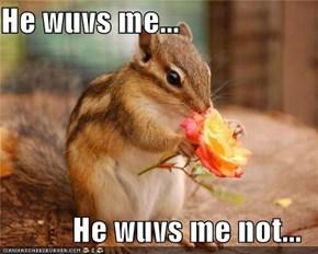 He wuvs me...  He wuvs me not...