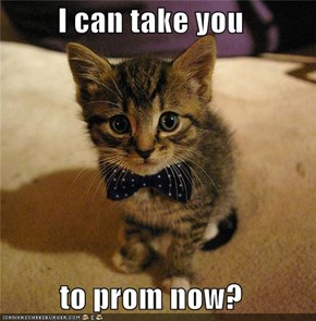 I can take you  to prom now?