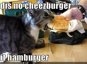 dis no cheezburger  it hamburger
