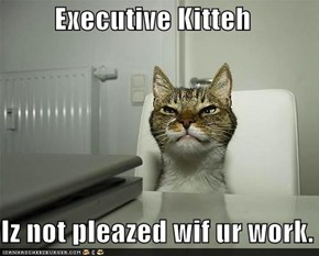 Executive Kitteh  Iz not pleazed wif ur work.