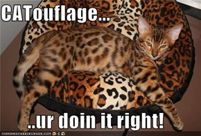 CATouflage...  ..ur doin it right!