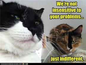 We're not insensitive to your problems...