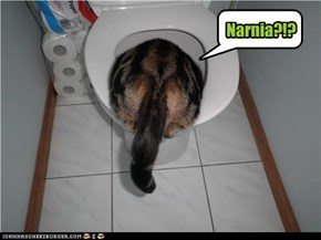 Narnia?!?