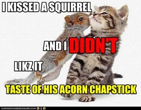 I KISSED A SQUIRREL