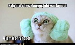 Halp mai cheezeburger,  obi wan kenobi