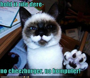 hold it rite dere-  no cheezburger, no komputer!
