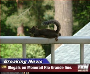 Breaking News - Illegals on Monorail Rio Grande line.
