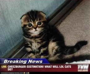Breaking News - CHEEZBURGER EXSTINKTION! WHAT WILL LOL CATS DO?