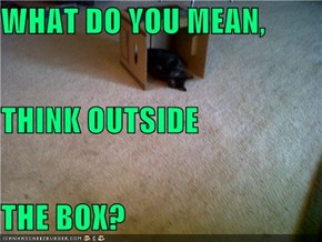 WHAT DO YOU MEAN, THINK OUTSIDE THE BOX?