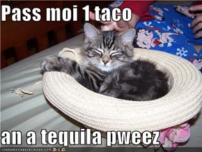 Pass moi 1 taco  an a tequila pweez