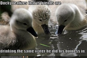 Ducky realizes that is friends are  drinking the same water he did his buiness in.