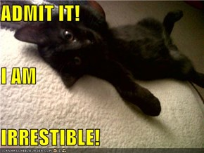 ADMIT IT! I AM IRRESTIBLE!