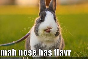 mah nose has flavr
