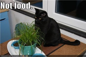Not food.