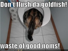 Don't flush da goldfish!  waste of good noms!