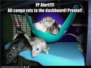 Never Fear the Conga Rats Are Here!