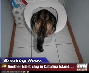 Breaking News - Another toilet clog in Catalina Island....