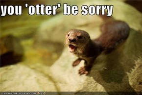 you 'otter' be sorry