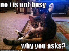 no i is not busy  why you asks?