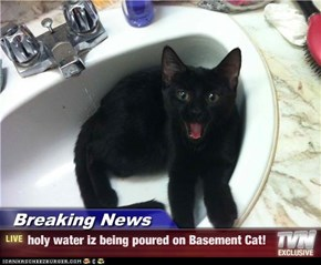 Breaking News - holy water iz being poured on Basement Cat!