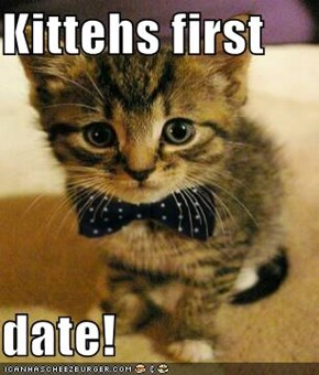 Kittehs first   date!