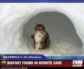 MEANWHILE in the Himalayas - BIGFOOT FOUND IN REMOTE CAVE