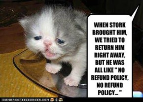 "WHEN STORK BROUGHT HIM, WE TRIED TO RETURN HIM RIGHT AWAY, BUT HE WAS ALL LIKE "" NO REFUND POLICY, NO REFUND POLICY... """