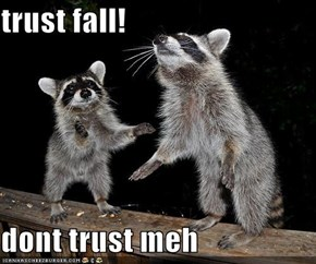 trust fall!  dont trust meh