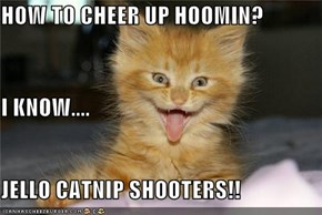 HOW TO CHEER UP HOOMIN? I KNOW.... JELLO CATNIP SHOOTERS!!