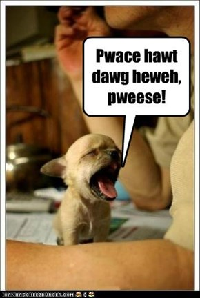 Pwace hawt dawg heweh, pweese!