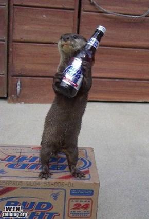Otter's Choice WIN