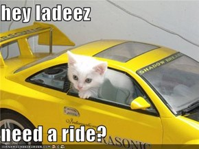 hey ladeez  need a ride?