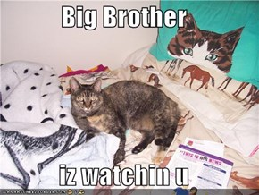 Big Brother   iz watchin u