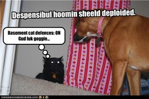 Despensibul hoomin sheeld deploided.