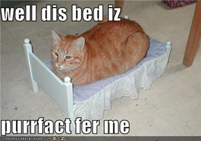 well dis bed iz  purrfact fer me