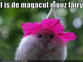 I is de magacul mouz fairy